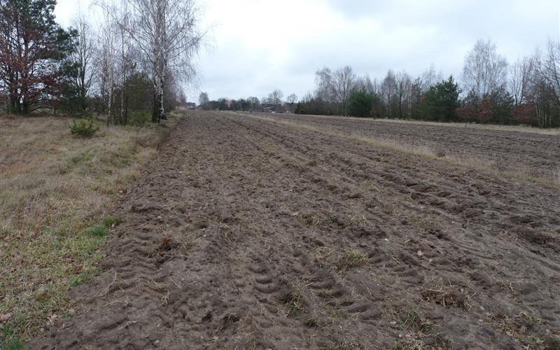 Nieruchomość niezabudowana. Działki i grunty. Dąbrowa, 05-320, Dąbrowa, (woj. mazowieckie)